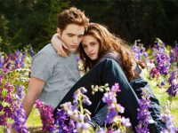 "Movie Review: ""Breaking Dawn – Part 2"" And A Chat With Cast Members"