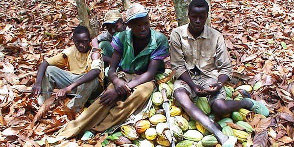 'slavery in the chocolate industry' 1 what are the systemic, corporate, and individual ethical issues raised by this case i think the government of both countries which is the producer of the cocoa.