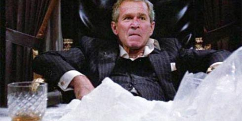A Cocaine Bush