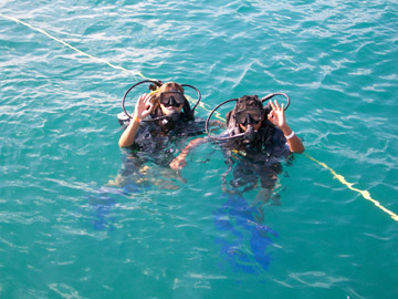 Scuba Diving in Tobago