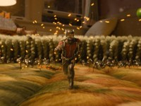 Ant-Man: Good Things Come In Small Packages