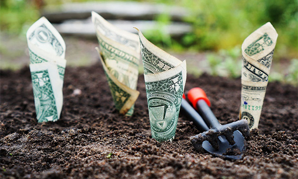 grow your money investing